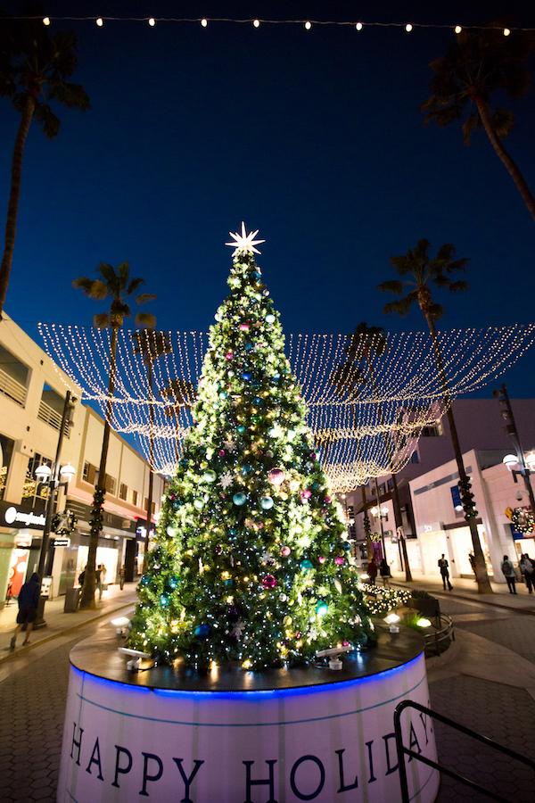 Holiday tree, lighting, Santa Monica, Holidays, Event Lighting, Tree Lighting